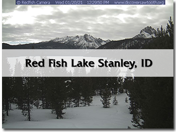 redfishwebcam