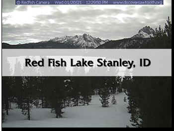 redfishwebcam