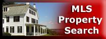 MLS Property Search
