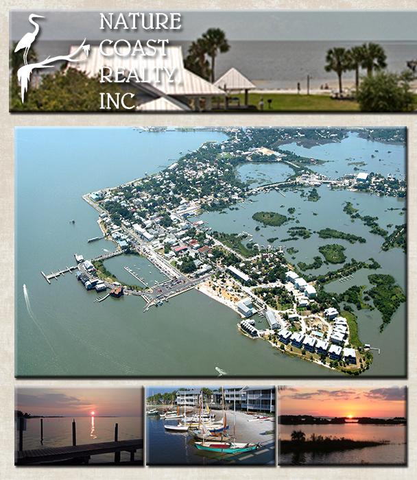 Cedar Key Homes For Real Estate In Florida Jennie Pinto