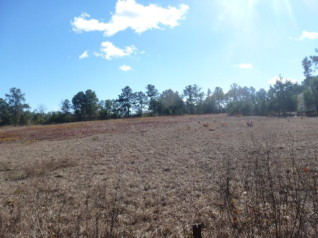 Hillcrest Pkwy Land