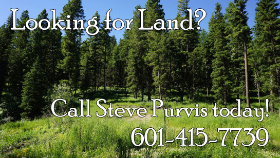 Looking for Land in Vicksburg, Warren County, Port Gibson, or Claiborne County in Central Mississippi? Call Steve Purvis at 601-415-7739 today!